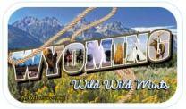 Wyoming State (24 tins)